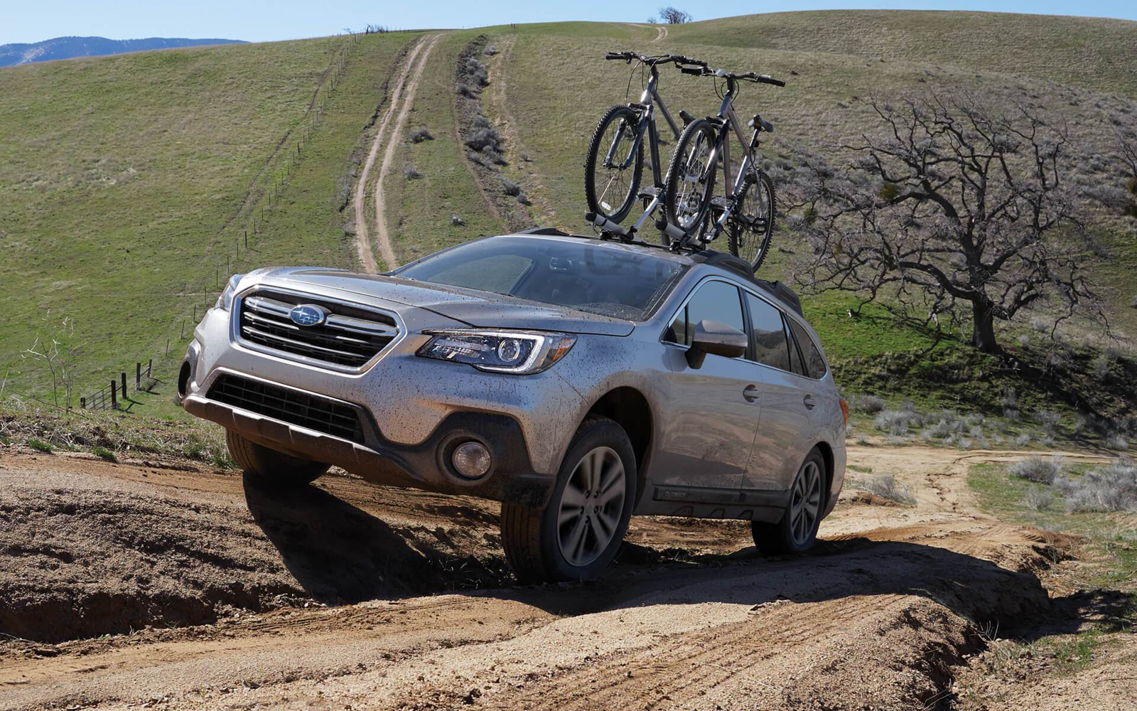 Which Subaru is Better – Forester or Outback? - 0-60 Specs